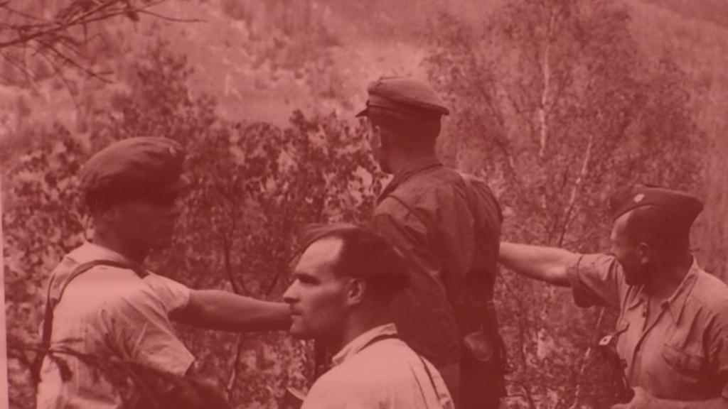 Як святкували день армії в УПА — архівні документи онлайн